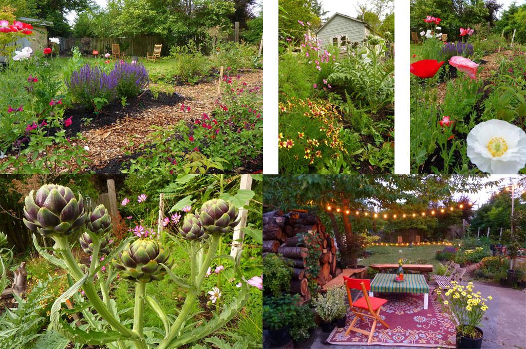 Back yard gallery