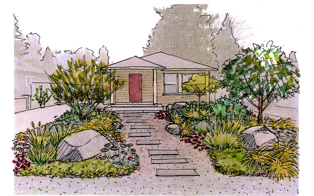 Garden creation seasonal colors garden drawntogarden for Garden design sketches