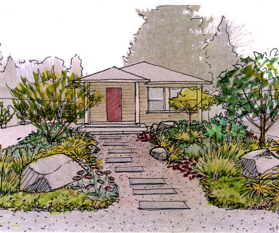 Sketch for the Design of the Front yard garden