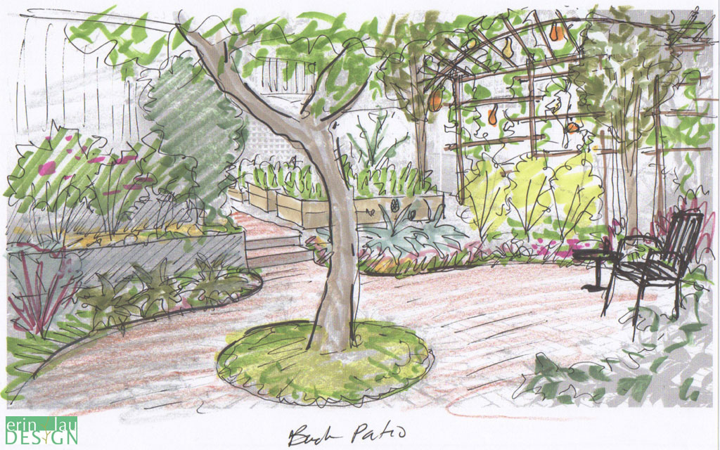 patio sketch with edible border - Garden Design Drawing