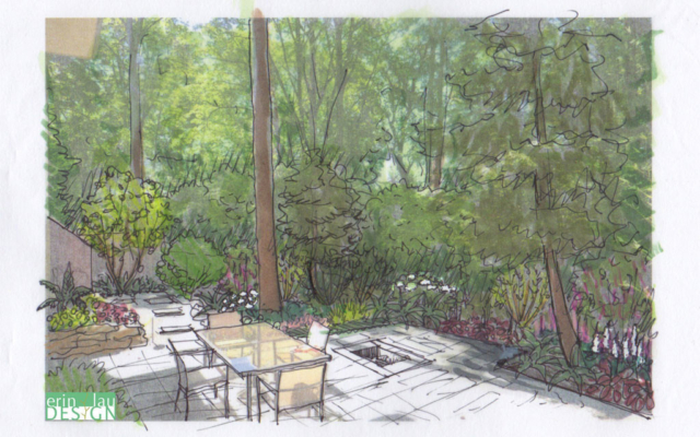 Wooded garden patio sketch