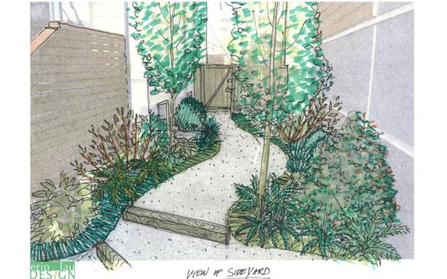 Shady side yard path sketch