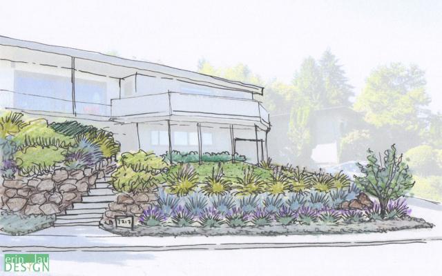 Front hillside garden sketch