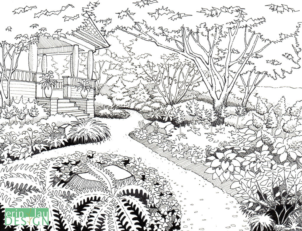 Refined garden drawing based on earlier sketch