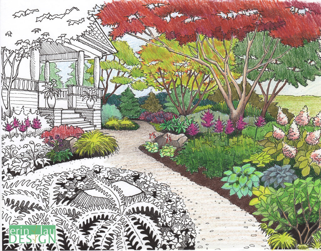 Garden drawing details drawntogarden for Garden landscape drawing