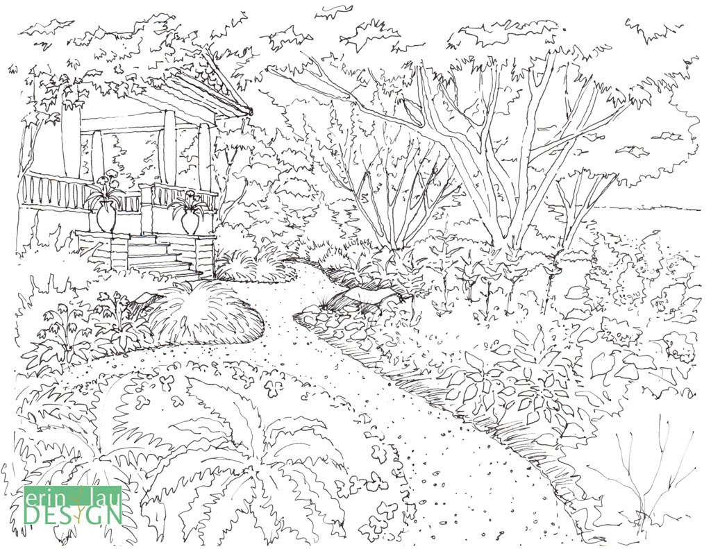 Original sketch of garden drawing, taken from my coloring book.