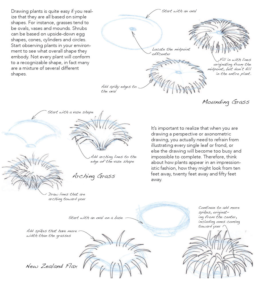 drawingplants_1