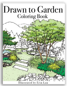 Coloring Book Now On Amazon