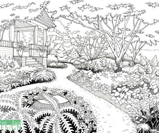 Axonometric Garden Drawing | DrawnToGarden